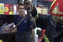 """眼镜王蛇进超市""""闲逛"""""""