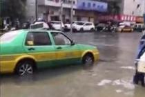 广东湛江突降暴雨 汽车成船