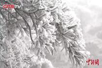 黄山风景区迎来今冬第一场降雪