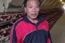 男子35年挖8个窑洞养鸡