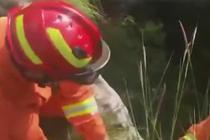 警犬掉进山洞 消防员来营救