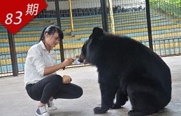 与熊共舞的女孩