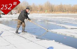 松花江上采冰人
