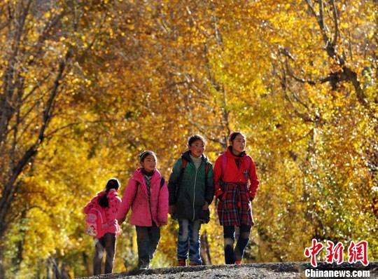 秋景下放学回家的孩子们. 刘忠俊 摄