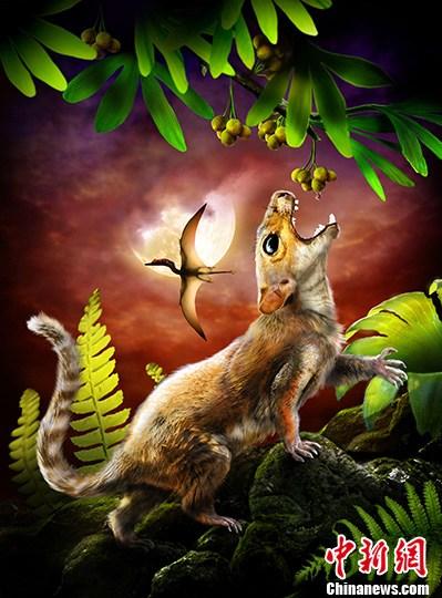 世界最原始带毛发哺乳动物化石亮相辽宁