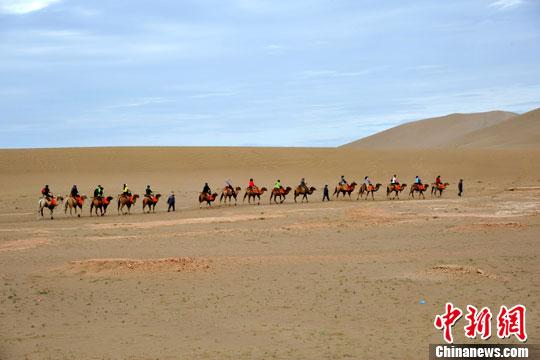 8月15日,敦煌鸣沙山风景区内,游客骑上骆驼组队穿行沙漠,体验当地