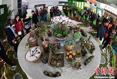 国际知名花卉苗木企业首次亮相合肥苗交会