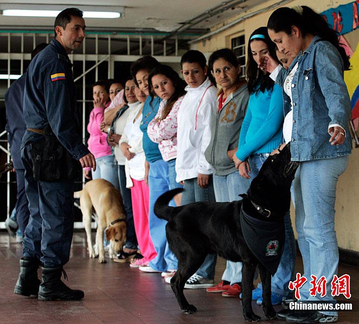 波哥大一所女子监狱举行选美比赛