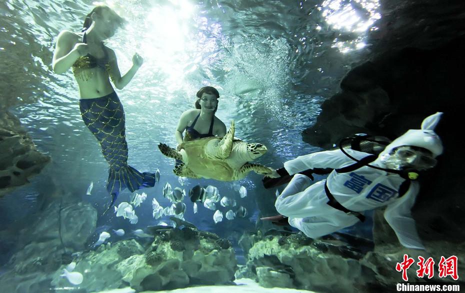壁纸 海底 海底世界 海洋馆 水族馆 930_586