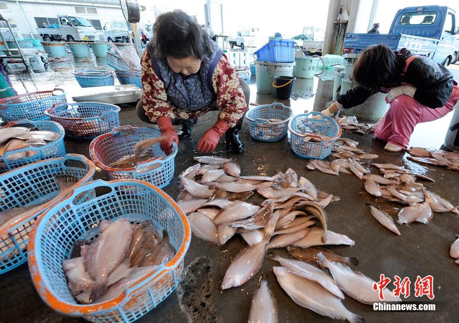 日本捕到含人工放射性碘 131海鱼