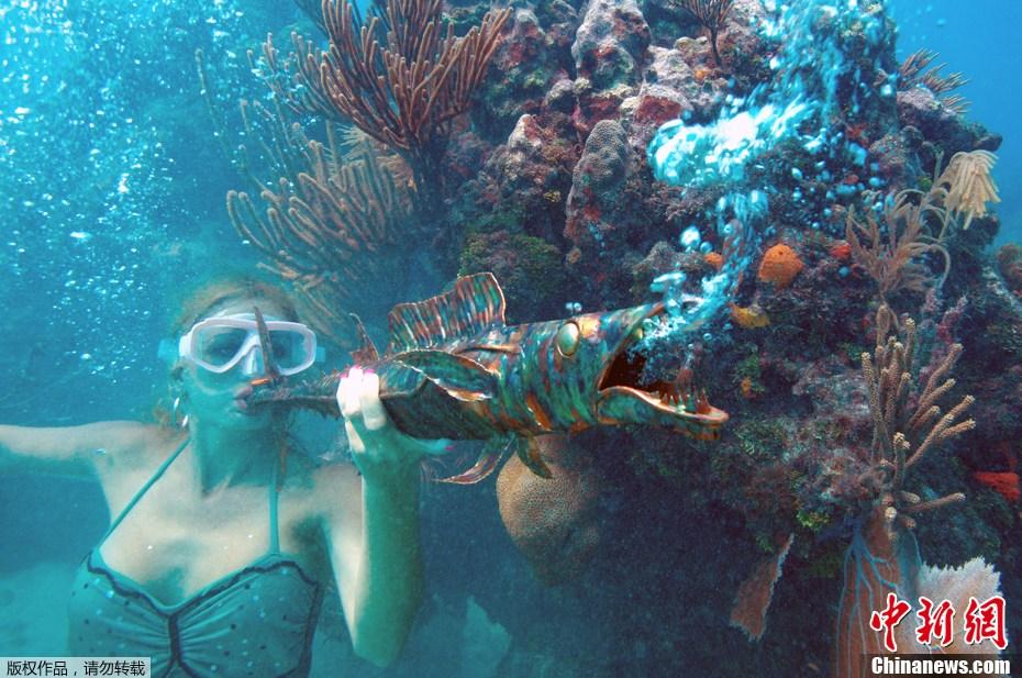 壁纸 海底 海底世界 海洋馆 水族馆 930_617