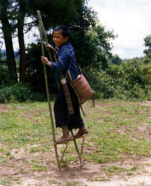 拉祜族总人口有多少
