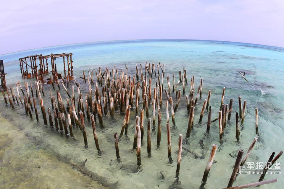 南沙英雄礁\u2014\u2014赤瓜礁-中新网