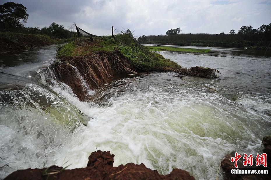 海口一水库发生外溢 近千亩农田被淹