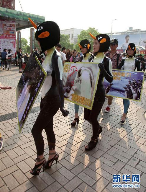 """女大学生街头扮""""企鹅""""宣传环保引围观"""