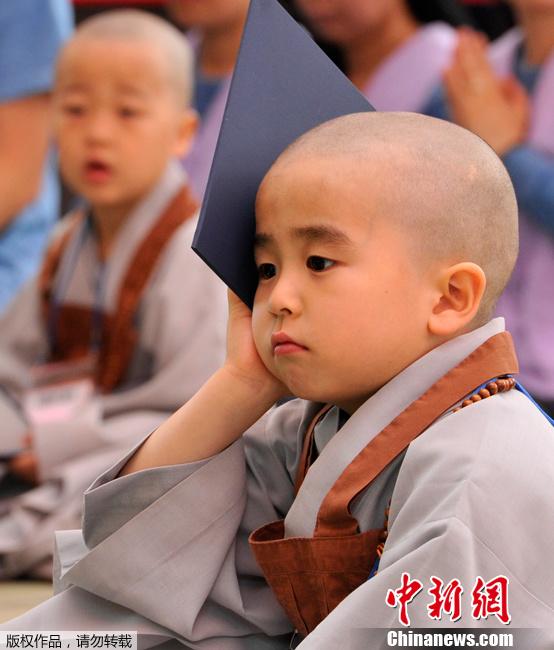 """韩国迎接佛诞节 """"小正太""""剃度可爱多"""