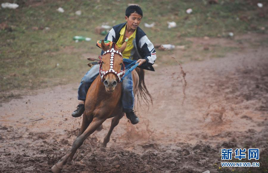 骏马 火把节 云南 彝族/7月19日,一名彝族骑手在比赛中。