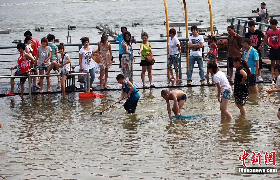 天津塘沽外滩公园被淹 市民捉鱼戏水