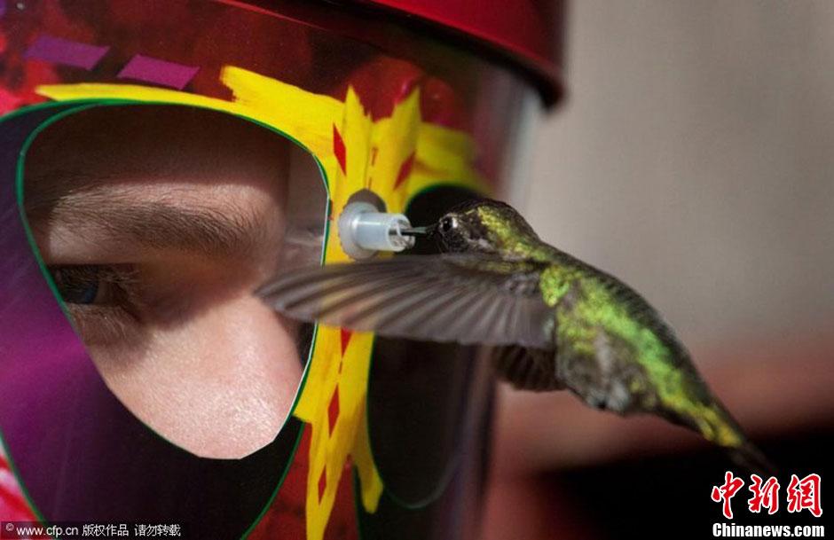 图说2012之最牛的发明——喂食头盔