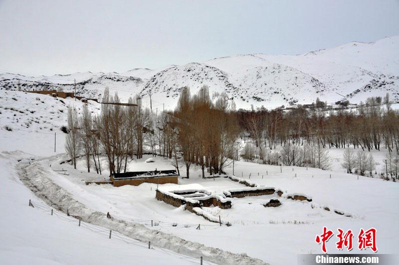 """中国雪乡阿勒泰冬季白雪镶嵌的""""童话乐园"""""""
