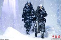 巴黎/巴黎时装周打造冷酷秀场 北极熊雪橇犬齐亮相