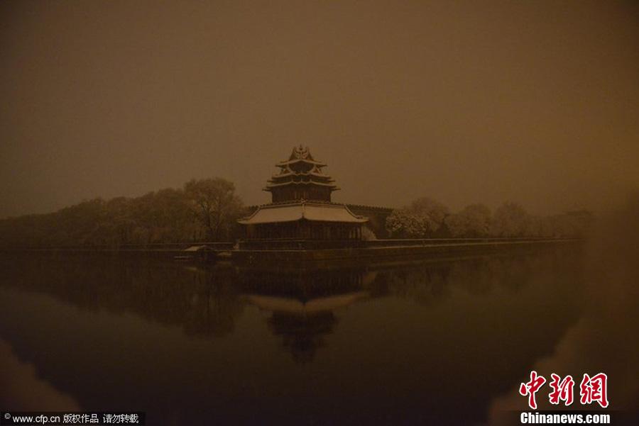 北京降雪 树挂景观成春日美景