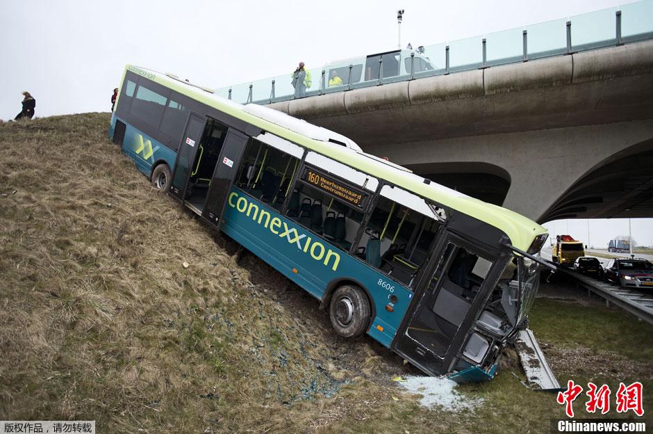 荷兰公交车冲下路肩酿事故 中新网