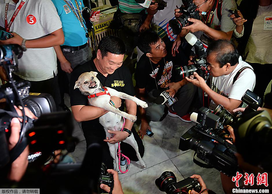 """菲律宾""""英雄狗""""结束在美治疗 返乡受热烈欢迎"""