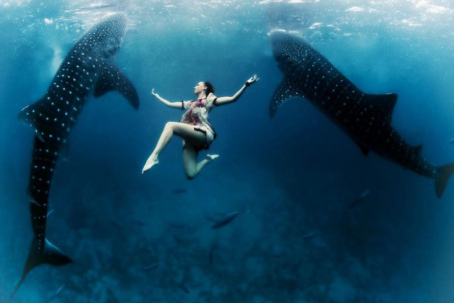 美女与鲸鲨海底共舞 视觉震撼仿佛走进科幻大片
