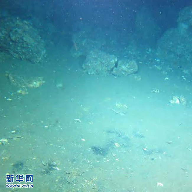 """高清:""""蛟龙""""眼中的海底世界"""