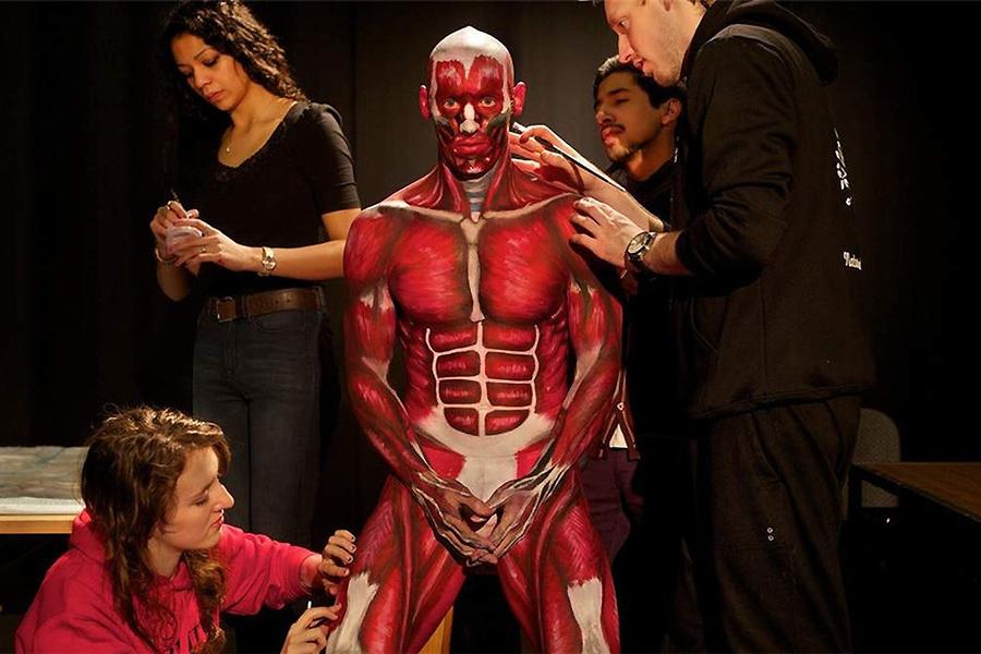 澳大利亚教授用人体彩绘讲授解剖 中新网