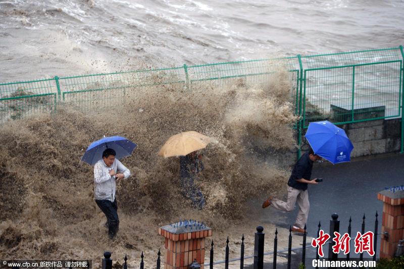 杭州美女坝现凶猛回头潮 多名游客受袭击 中