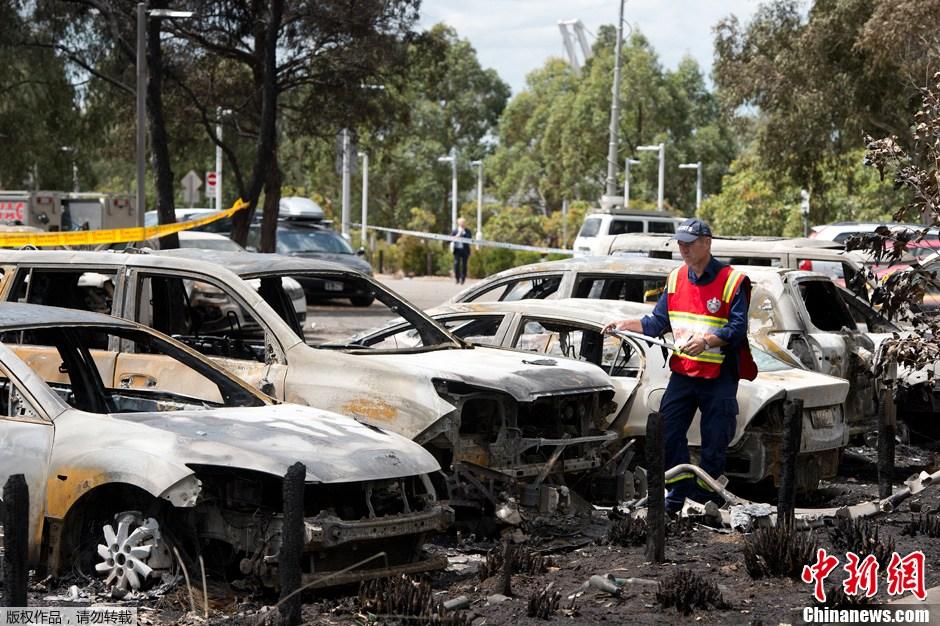 澳大利亚悉尼发生火灾 80余辆汽车被毁