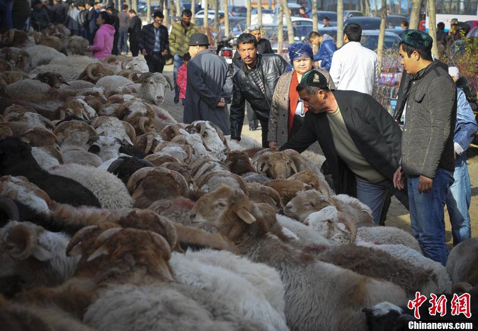 新疆穆斯林民众欢度古尔邦节