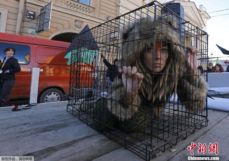 俄美女变身笼中野兽 街头抗议使用皮草 中新网