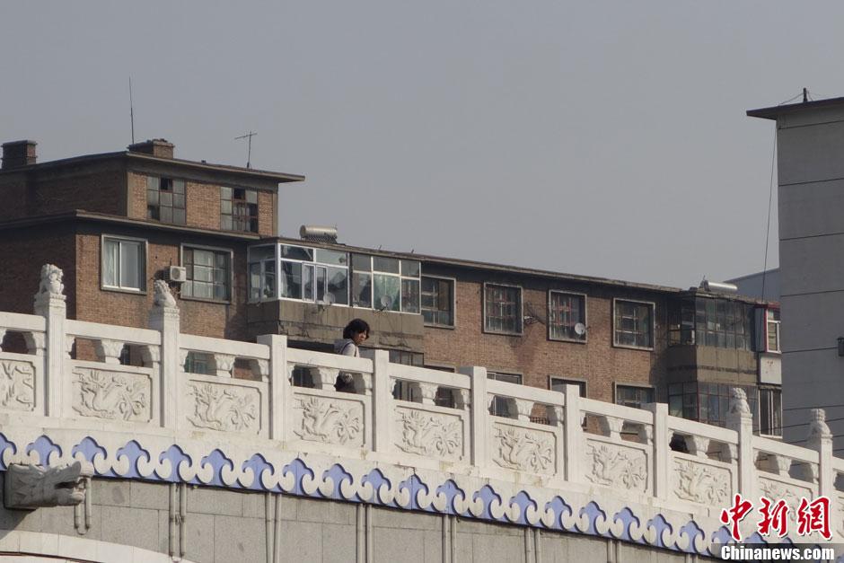 内蒙古一历史恢复景观上11只石狮子被盗