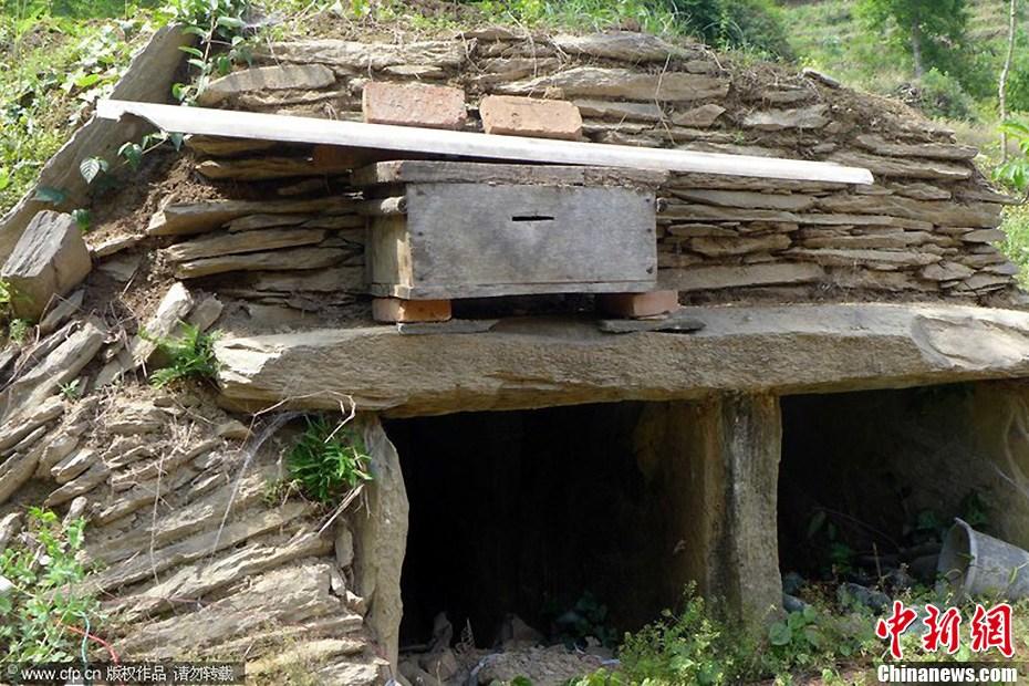 陕西宁强发现羌人古墓群图片