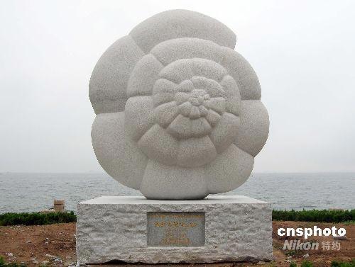 """图:海洋生物""""有孔虫""""雕塑落户烟台(2)"""