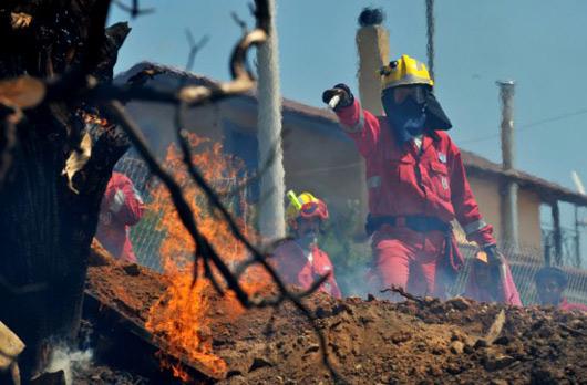 组图:希腊森林火灾蔓延图片