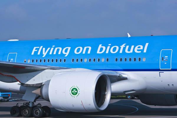 图片频道-荷兰航空飞机使用地沟油燃料执飞