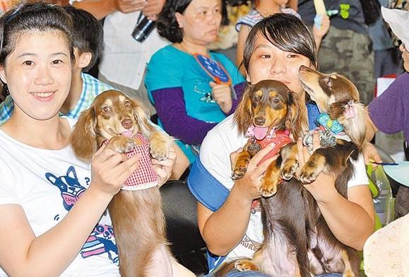 台北辦狗狗健行日活動上千愛犬參加畫面超有趣