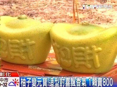 水果柚子动物造型图片