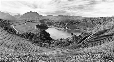 台湾乡村的特别吸引力:找回人与土地的感情连结
