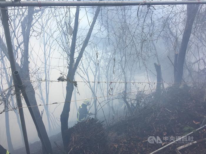 台中市发生火烧山延烧约1.5公顷消防局派员救援
