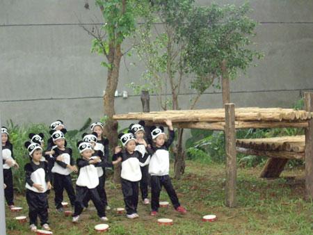 一群穿戴熊猫服的小朋友在馆内载歌载舞十分可爱
