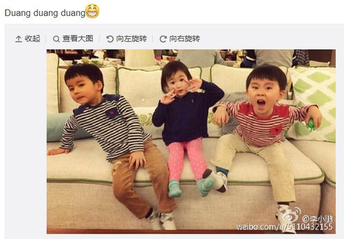 李小鹏晒奥莉与男孩玩耍照 网友调侃:别早恋(图)