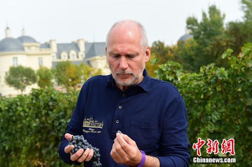 """一位酿酒师的梦想:打造""""中国的波尔多"""""""