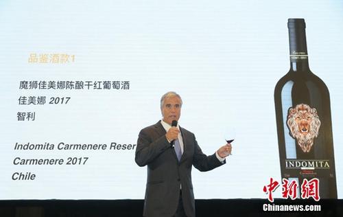 外媒:智利魔狮被张裕收购首年在中国销量猛增400%