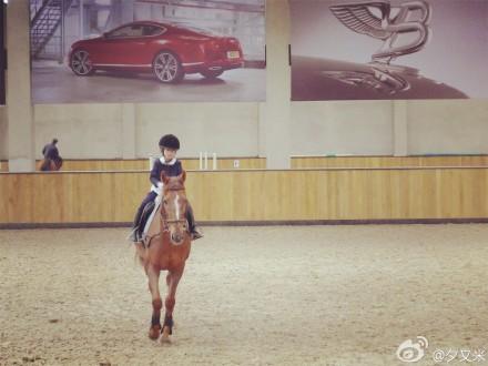 高晓松嫩妻晒性感希望照:骑马你以后养妈妈(图逃杀女儿大图片