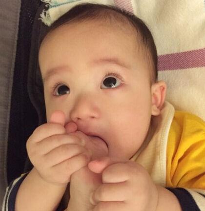 照片中小家伙用用水汪汪的大眼睛望着镜头,十分可爱.